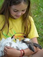 Resized holding a bunny1.jpg?ixlib=rails 2.1