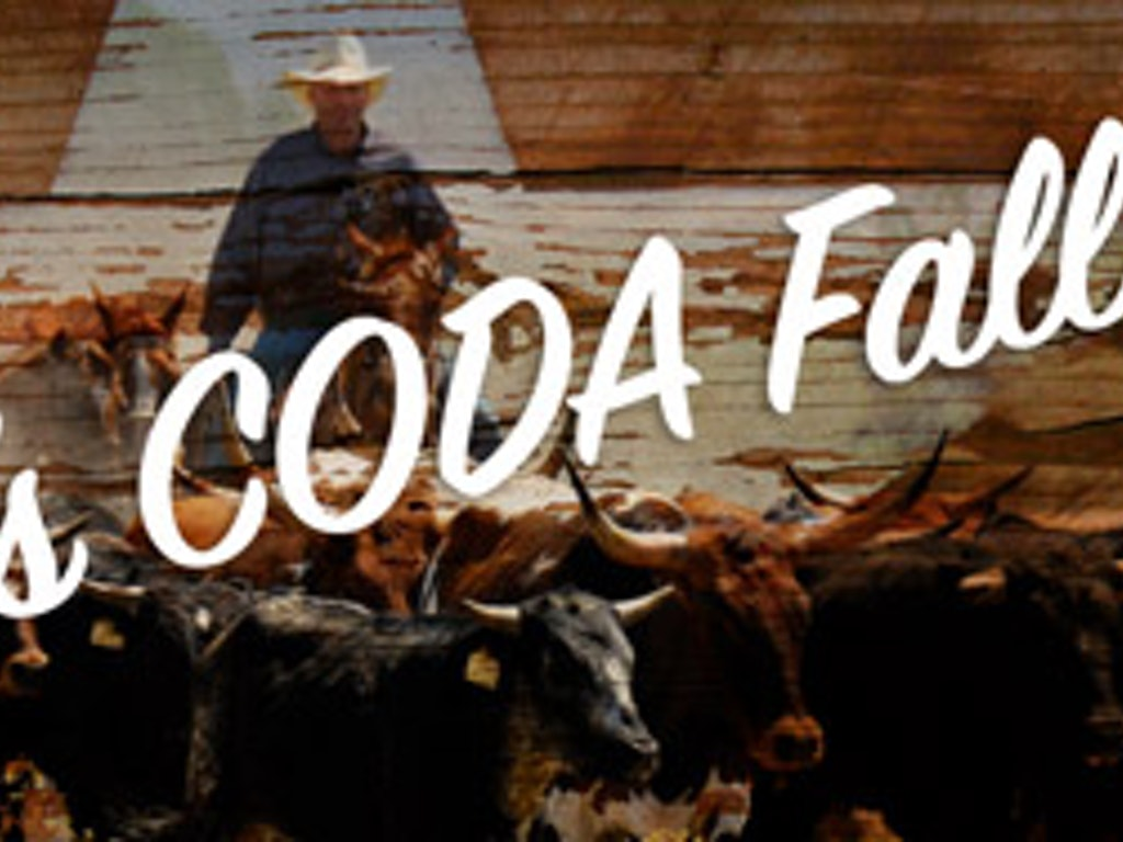 Get new ideas from CODA members, my goof is your gain!