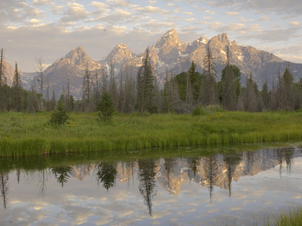 A Quick Natural History Lesson of the Tetons
