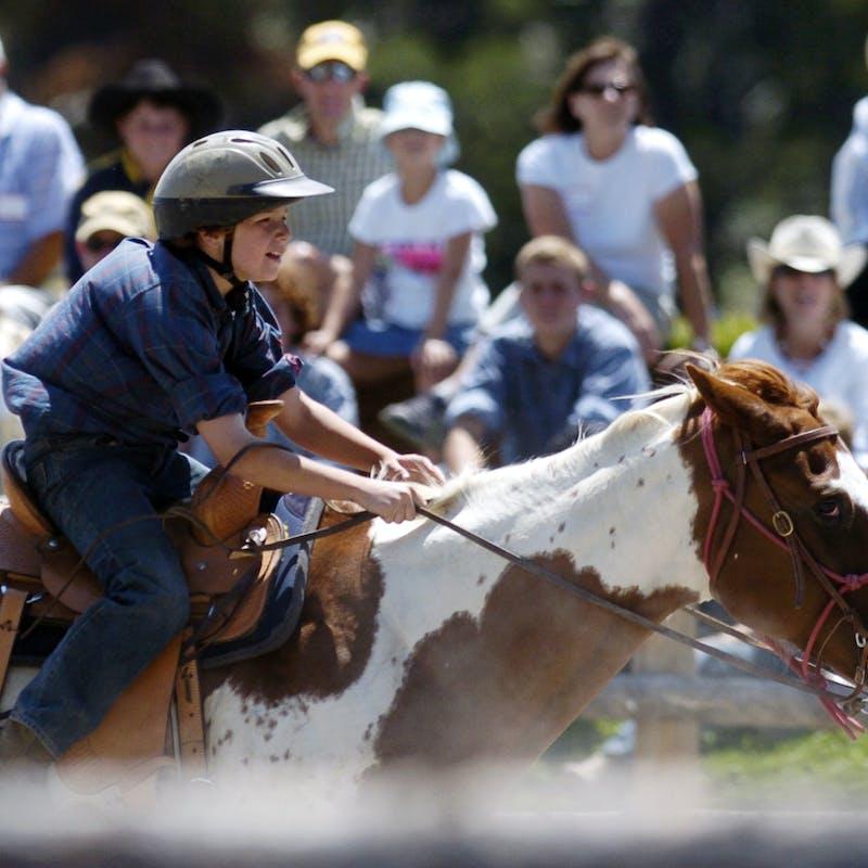 Saddle2.jpg?ixlib=rails 2.1