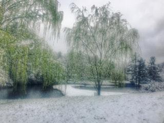 Snow 4.jpg?ixlib=rails 2.1