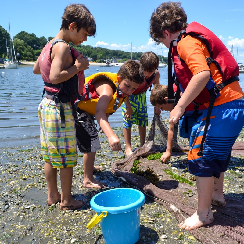 What parents say at alvernia summer day camp in new york.jpg?ixlib=rails 2.1