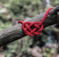 Heart lanyard.jpg?ixlib=rails 2.1