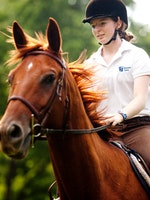 Concetrating on horseback riding at keystone camp for girls.jpg?ixlib=rails 2.1