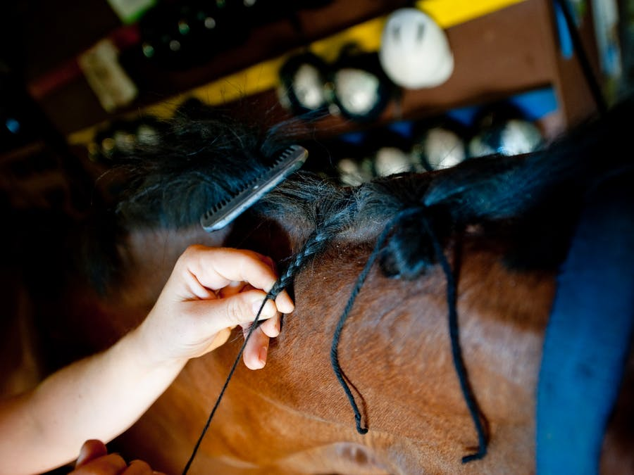 Braiding a horse at keystone camp for girls.jpg?ixlib=rails 2.1