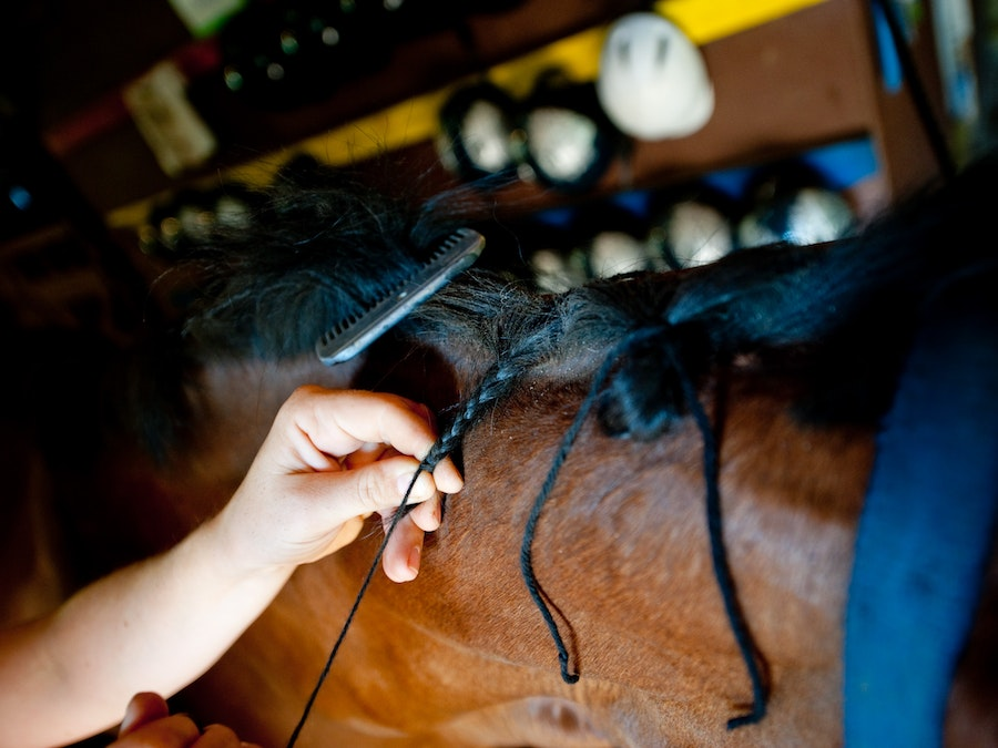 Braiding a horse at keystone camp for girls.jpg?ixlib=rails 2.1