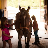 Caring for horses at keystone camp for girls.jpg?ixlib=rails 2.1