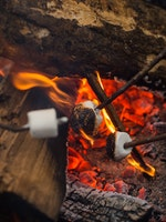 Roasting marshmallows at keystone camp for girls.jpg?ixlib=rails 2.1