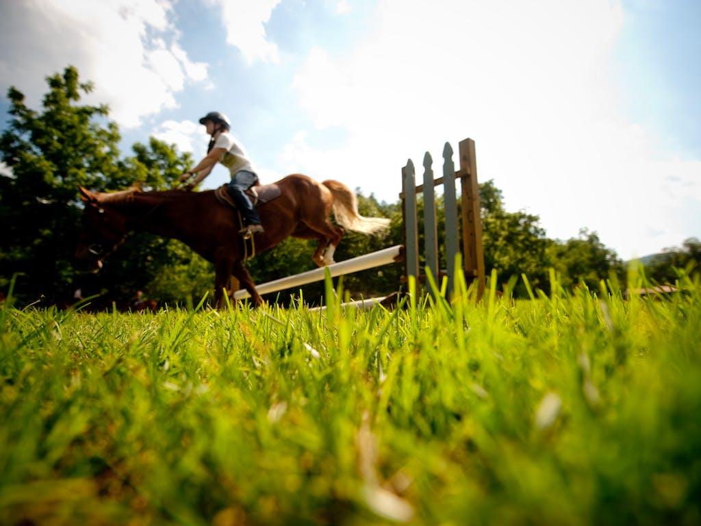 Jumping with horses at keystone summer camp for girls in north carolina.jpg?ixlib=rails 2.1