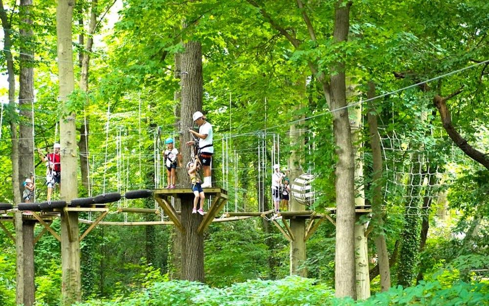 New york day camp for kids adventure.jpg?ixlib=rails 2.1