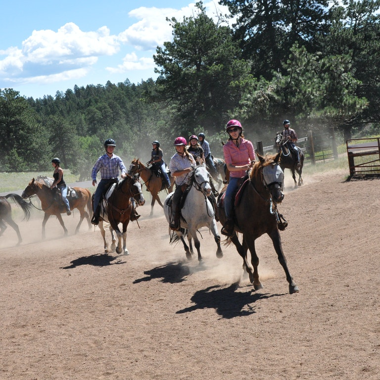 The Thrill of Horseback Riding