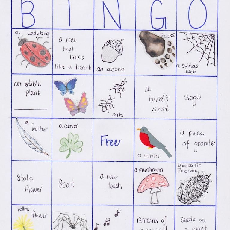 Nature Nuggets #2: Nature Bingo