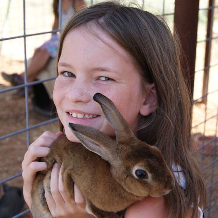 Girl with bunny.jpg?ixlib=rails 2.1
