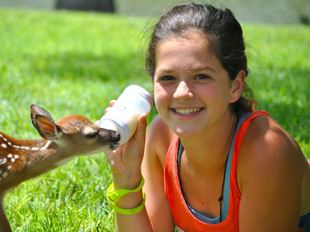 Girl summer camp feeding deer.jpg?ixlib=rails 2.1