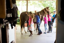 Horsemanship at highlander summer camp for boys and girls in north carollina.jpg?ixlib=rails 2.1