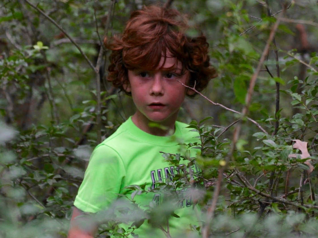 Last Child In The Woods: Chapter 3 The Criminalization of Natural Play