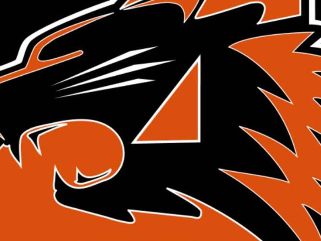 Aledo Camp Tailgate - Friday, October 26th, 5:30pm