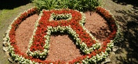 Flower r.jpg?ixlib=rails 2.1