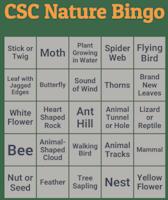 Nature bingo.png?ixlib=rails 2.1