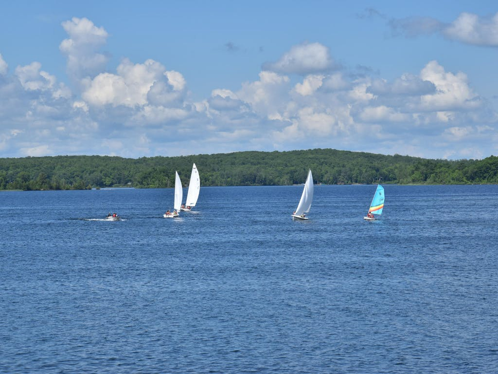Camp mishawaka summer camp for boys and girls staff sailing.jpg?ixlib=rails 2.1