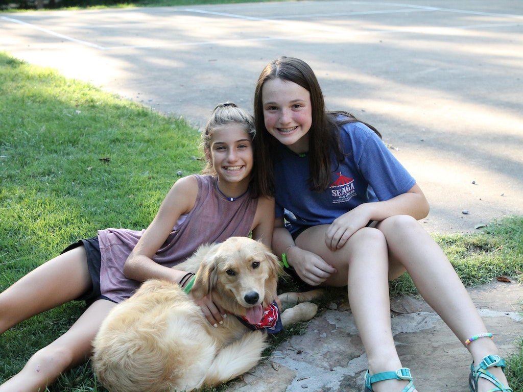 Takeover Tuesday with Bitsy the Camp Dog