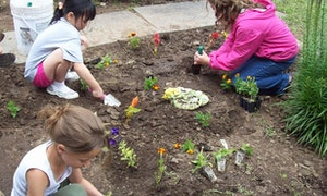 Gardening at deerkill.jpg?ixlib=rails 2.1