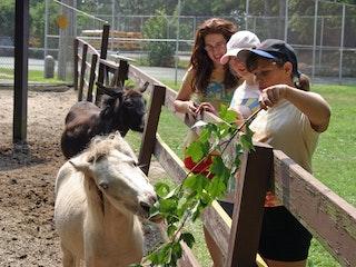 Feeding the mini horse.jpg?ixlib=rails 2.1