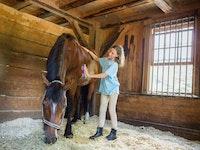 Horse grooming at camp pinecliffe.jpg?ixlib=rails 2.1